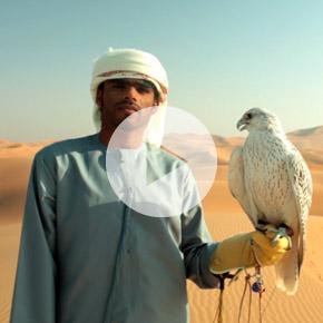 Tournage pub au milieu du désert